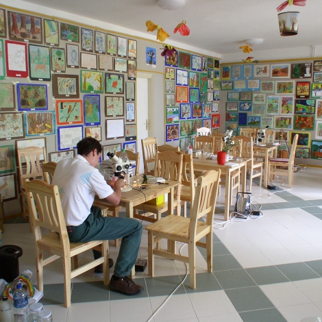 Erdei iskola tanterme (fotó: Sevcsik András)