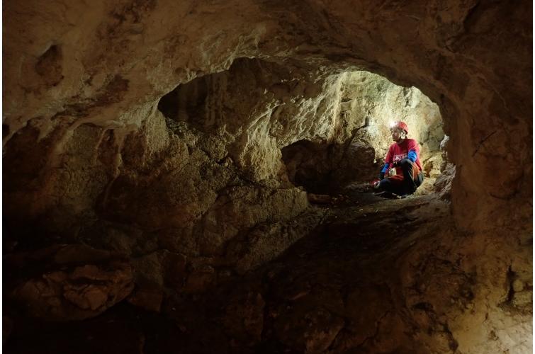 Zöld-barlang
