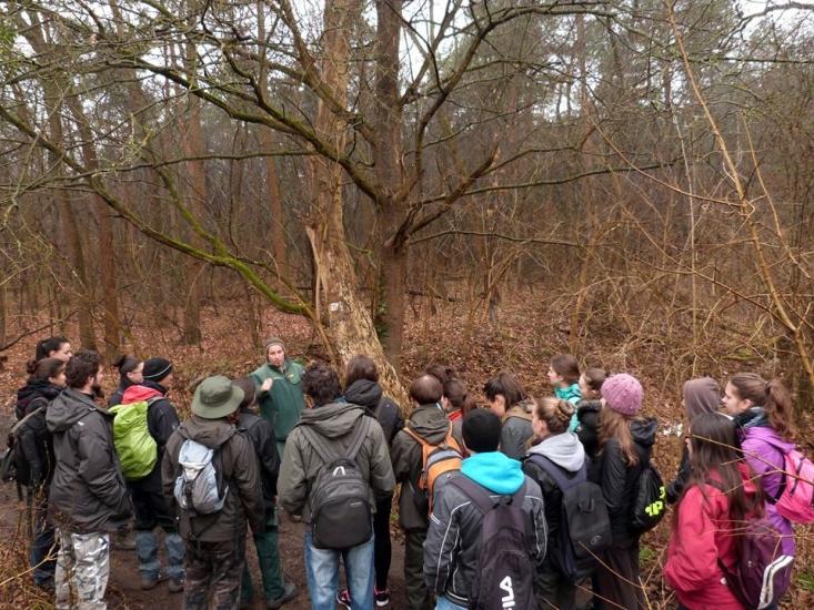 Önkéntesek a Gödöllői-dombvidek Tájvédelmi Körzetben (fotó: Iczi Attila)