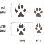 A farkas és a kutya nyoma közötti különbség (Forrás: Turista Magazin)