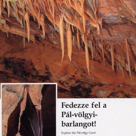 Fedezze fel a Pál-völgyi-barlangot!