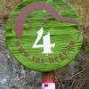 Pannongyík a tanösvény jelzőtábláin (fotó: Pethő Judit)