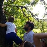 Hiúz tábor - fára mászás