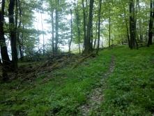 Bronzkori földvár Szokolya, Pap-hegy nyáron (Fotó: Bezeczky Árpád)