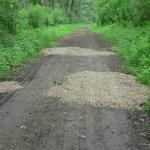 A kijavított, akadálymentes ösvény (Fotó: Nagy István)