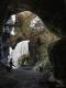 Jankovich-barlang 7