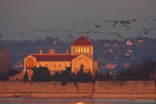 A tatai Öreg-tó (Fotó: Csonka Péter)