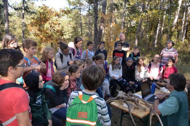 Természetismereti foglalkozás erdőben