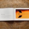 Madarak fényben és árnyékban fotóalbum