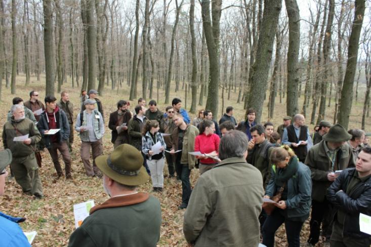 Az erdőkonferencia résztvevői a terepen (Fotó: Bódis Pál)