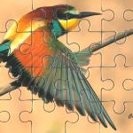 Kiss puzzle, gyurgyalag