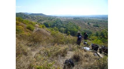 Önkéntes nap a Strázsa-hegyen